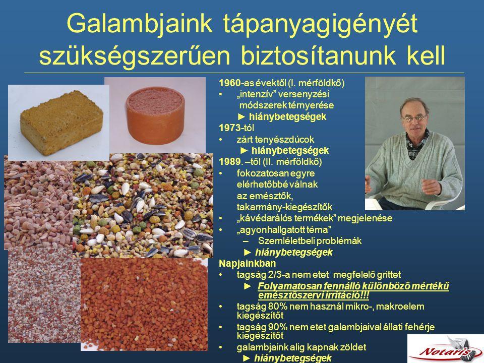 Galambjaink tápanyagigényét szükségszerűen biztosítanunk kell