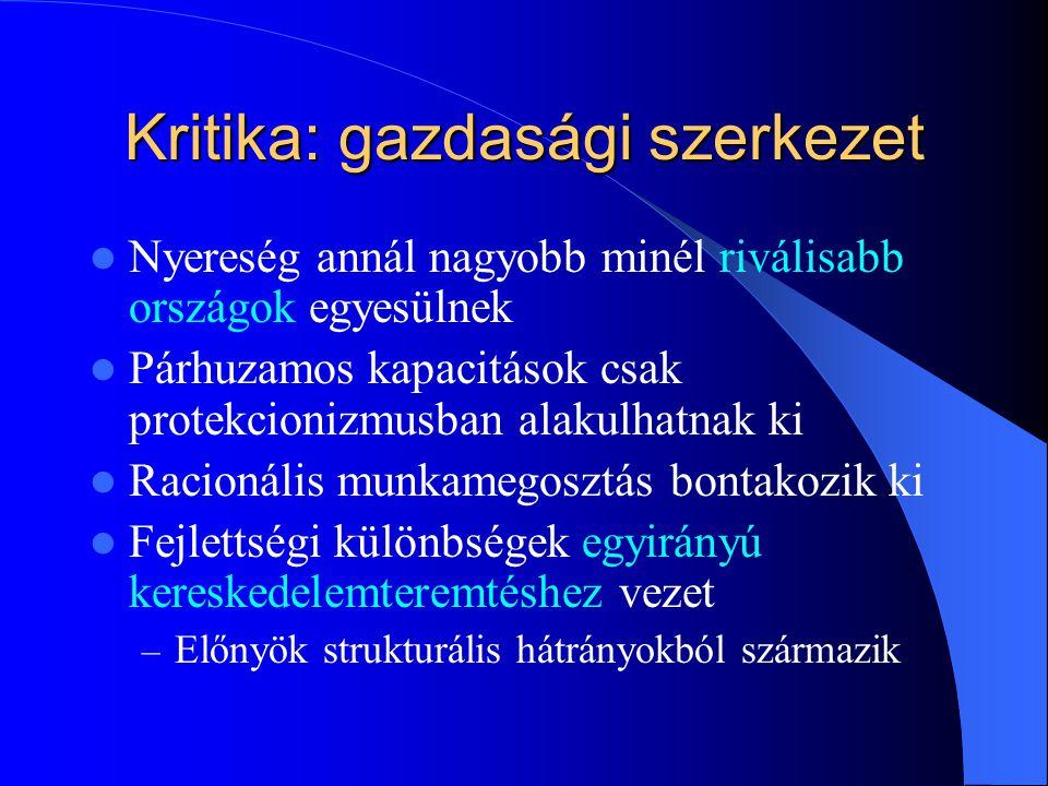 Kritika: gazdasági szerkezet
