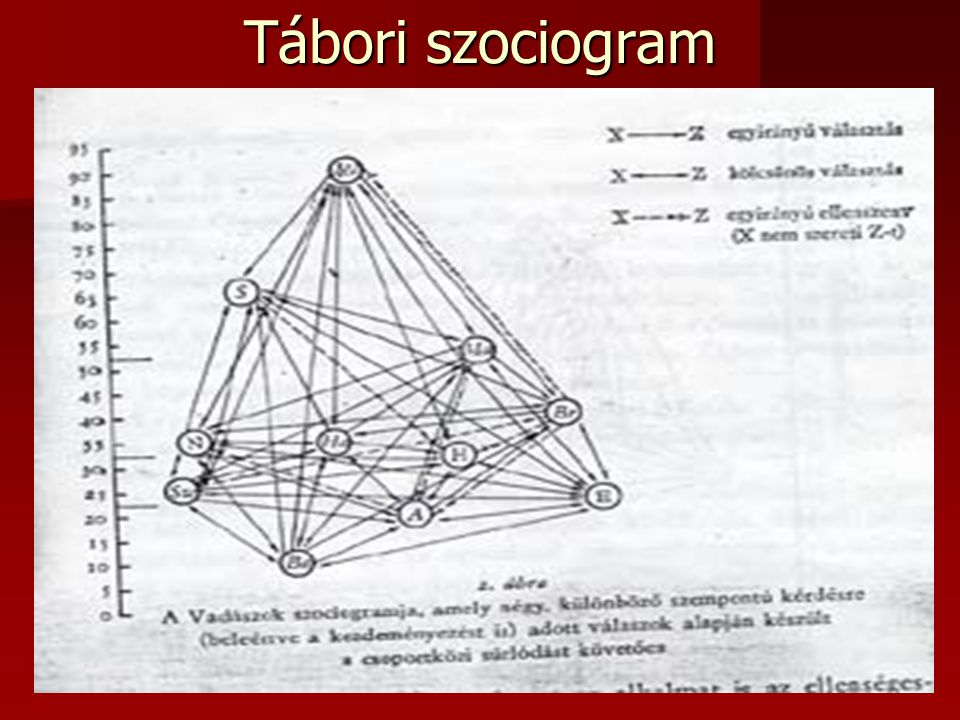 Tábori szociogram