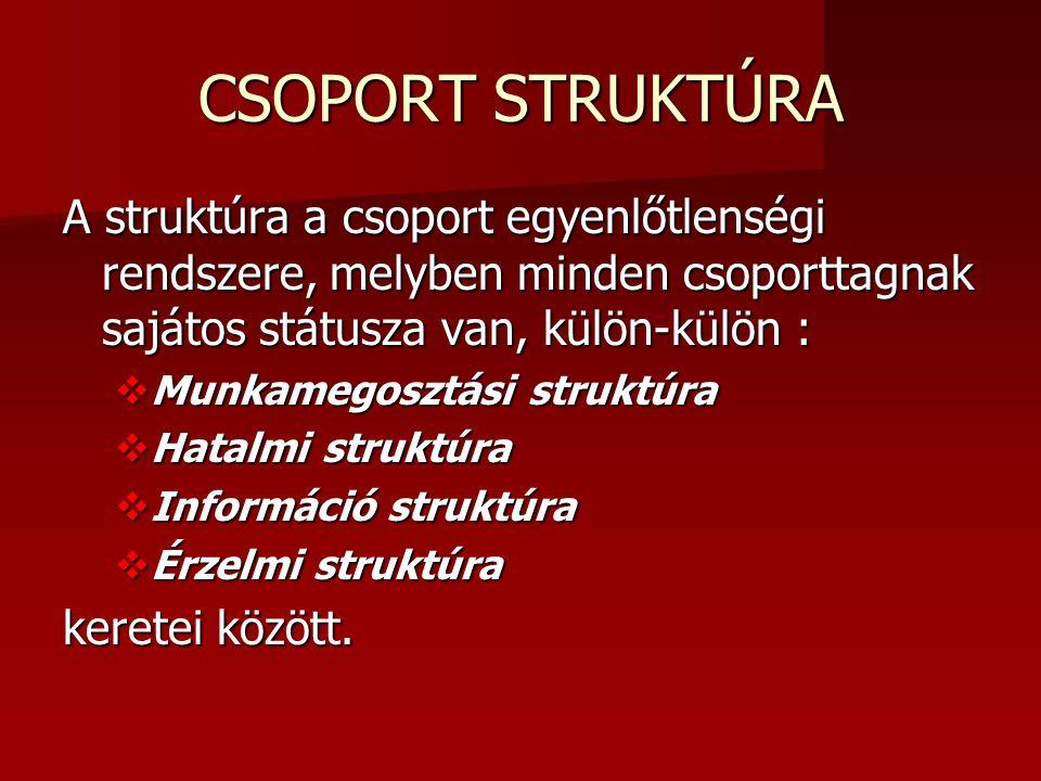 CSOPORT STRUKTÚRA A struktúra a csoport egyenlőtlenségi rendszere, melyben minden csoporttagnak sajátos státusza van, külön-külön :