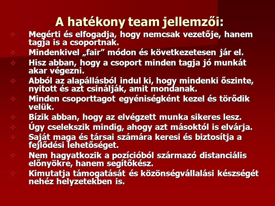 A hatékony team jellemzői: