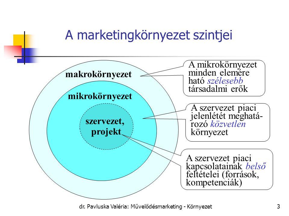 A marketingkörnyezet szintjei