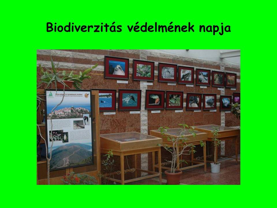 Biodiverzitás védelmének napja