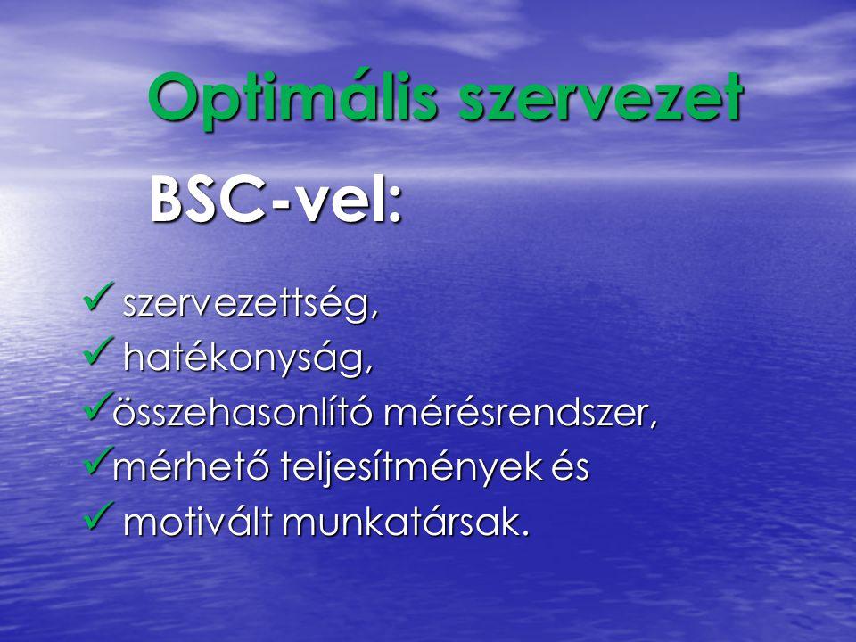 Optimális szervezet BSC-vel: szervezettség, hatékonyság,