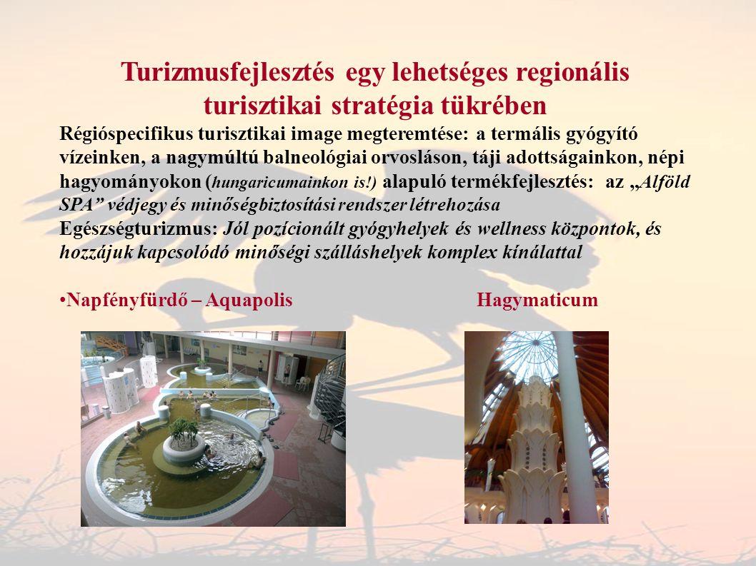 Turizmusfejlesztés egy lehetséges regionális turisztikai stratégia tükrében