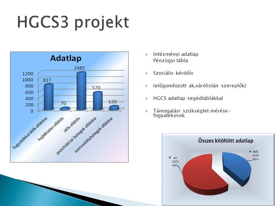 HGCS3 projekt Intézményi adatlap Pénzügyi tábla Szociális kérdőív