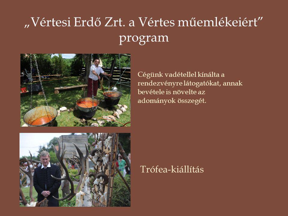 """""""Vértesi Erdő Zrt. a Vértes műemlékeiért program"""