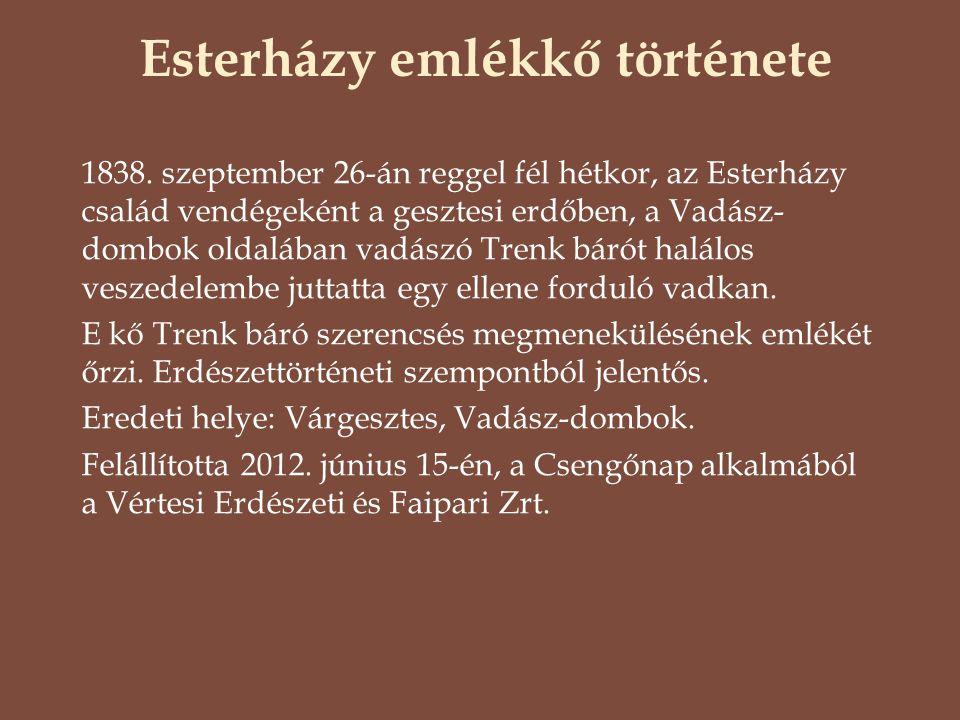 Esterházy emlékkő története