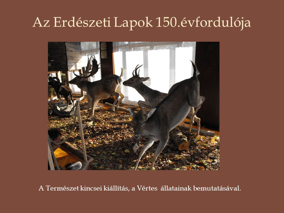 Az Erdészeti Lapok 150.évfordulója