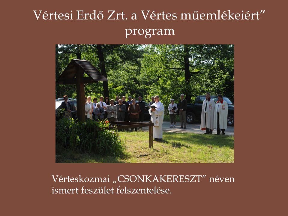 Vértesi Erdő Zrt. a Vértes műemlékeiért program