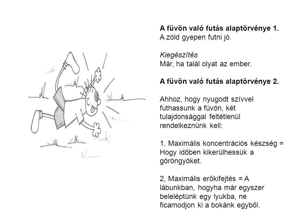 A füvön való futás alaptörvénye 1. A zöld gyepen futni jó