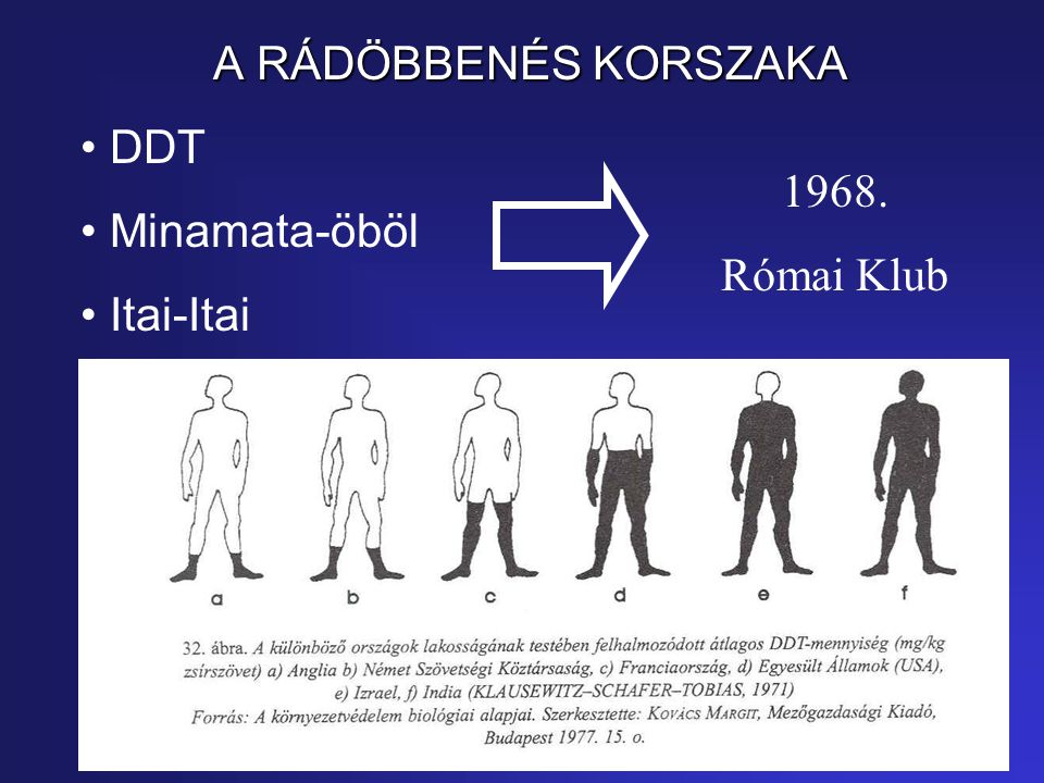 A RÁDÖBBENÉS KORSZAKA DDT Minamata-öböl Itai-Itai 1968. Római Klub
