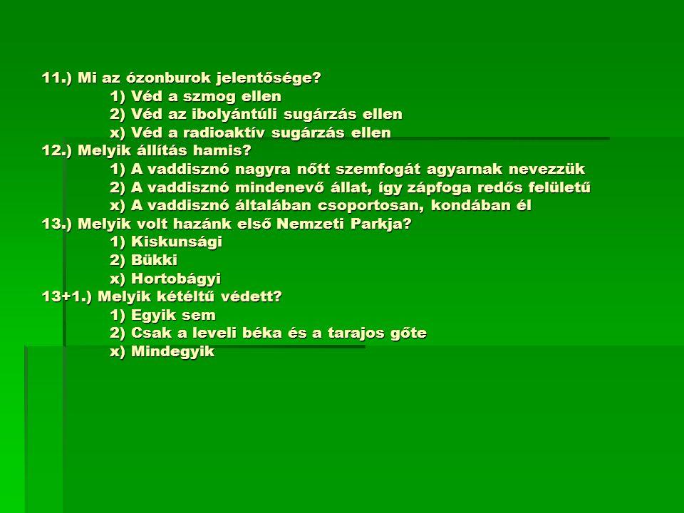 11. ) Mi az ózonburok jelentősége. 1) Véd a szmog ellen