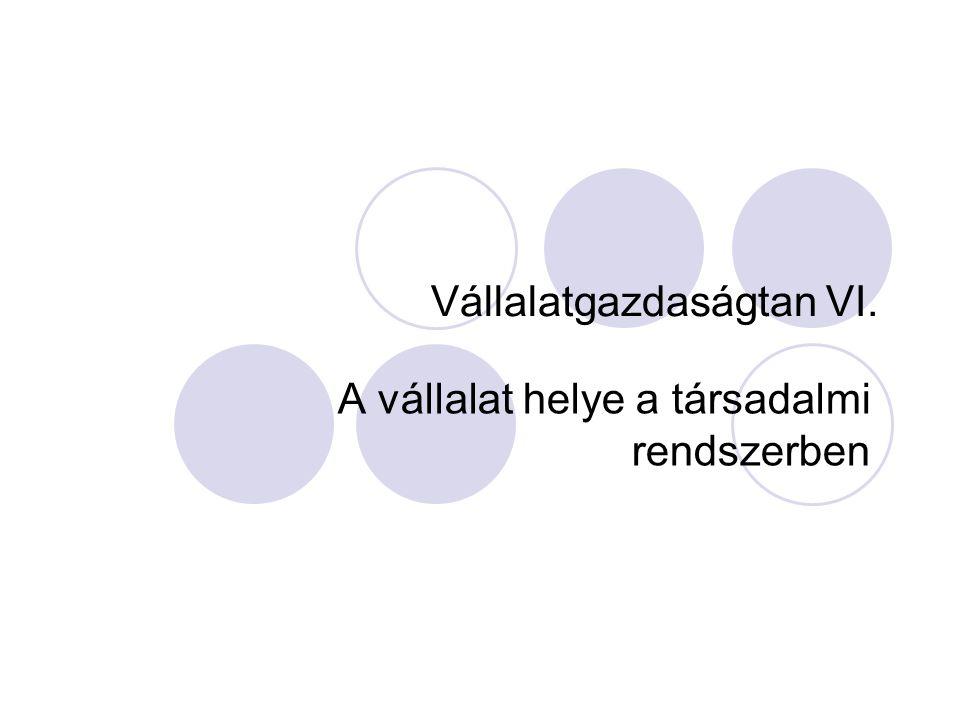 Vállalatgazdaságtan VI.
