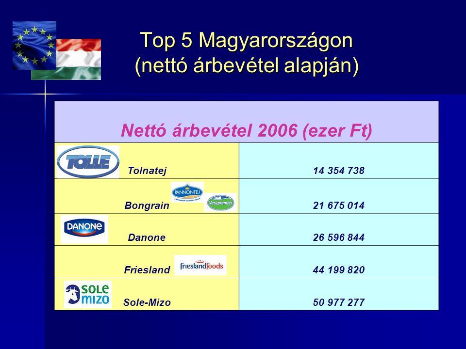 Top 5 Magyarországon (nettó árbevétel alapján)