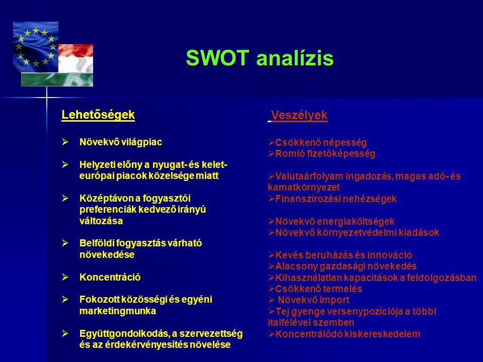 SWOT analízis Veszélyek Lehetőségek Csökkenő népesség