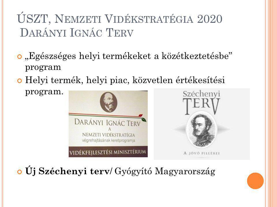 ÚSZT, Nemzeti Vidékstratégia 2020 Darányi Ignác Terv