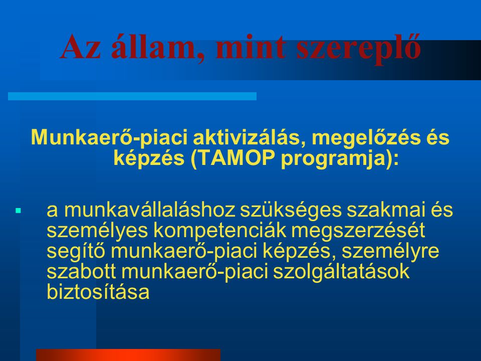 Munkaerő-piaci aktivizálás, megelőzés és képzés (TAMOP programja):