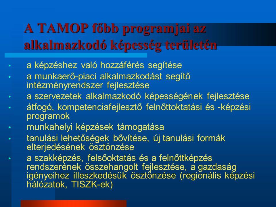 A TAMOP főbb programjai az alkalmazkodó képesség területén