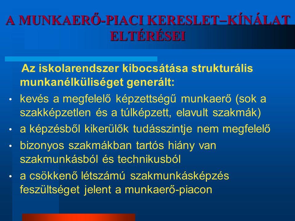 A MUNKAERŐ-PIACI KERESLETKÍNÁLAT ELTÉRÉSEI