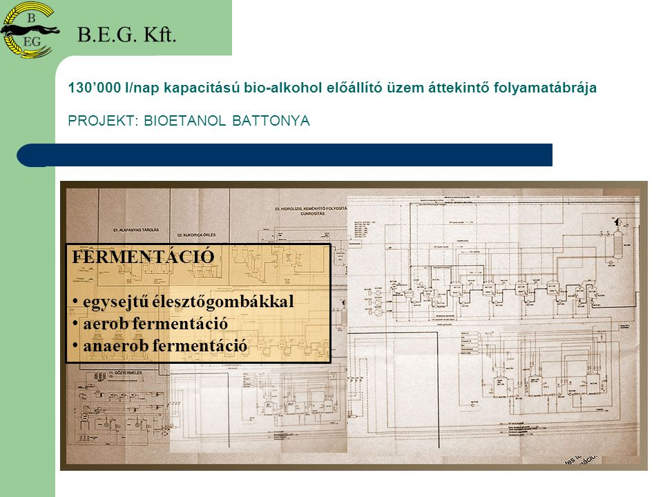 B.E.G. Kft. FERMENTÁCIÓ egysejtű élesztőgombákkal aerob fermentáció