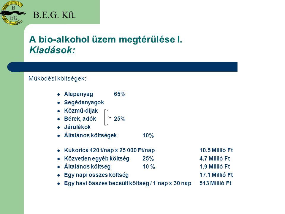 A bio-alkohol üzem megtérülése I. Kiadások: