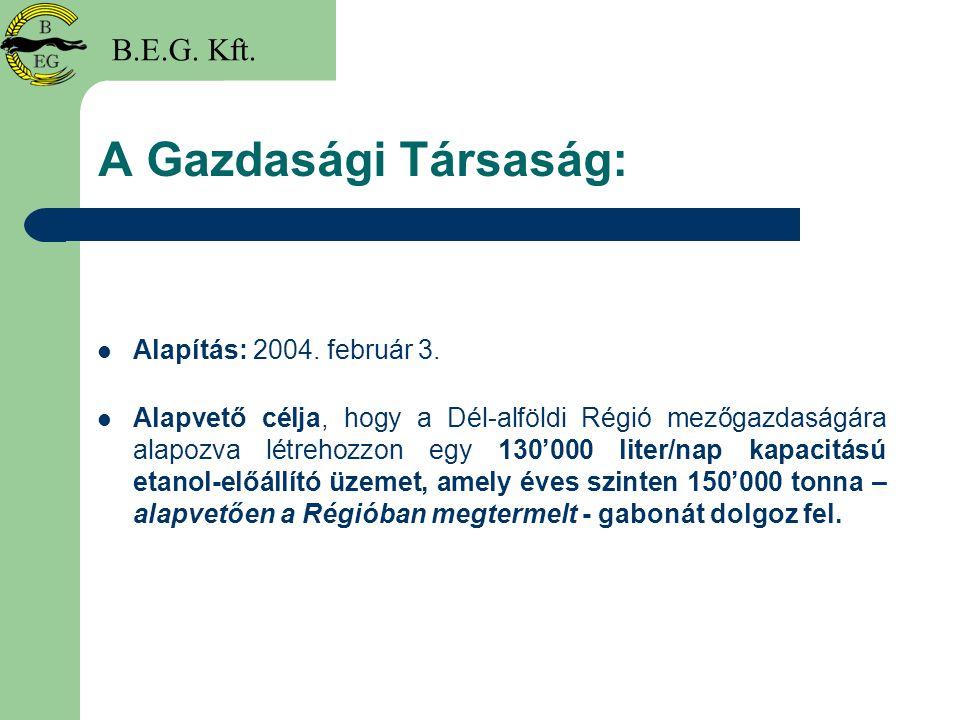 A Gazdasági Társaság: B.E.G. Kft. Alapítás: 2004. február 3.