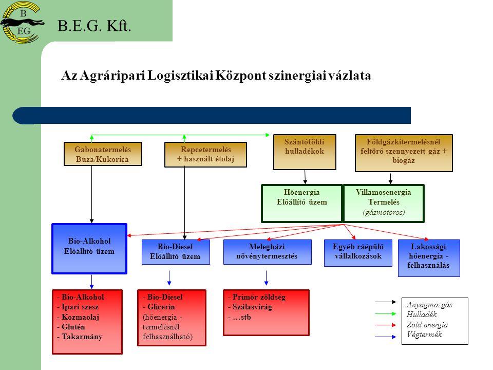 B.E.G. Kft. Az Agráripari Logisztikai Központ szinergiai vázlata