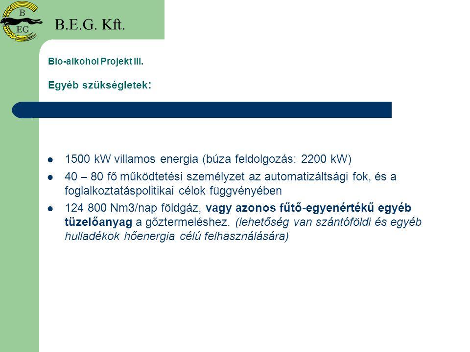 Bio-alkohol Projekt III. Egyéb szükségletek: