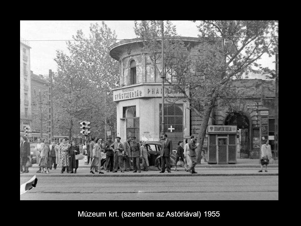 Múzeum krt. (szemben az Astóriával) 1955