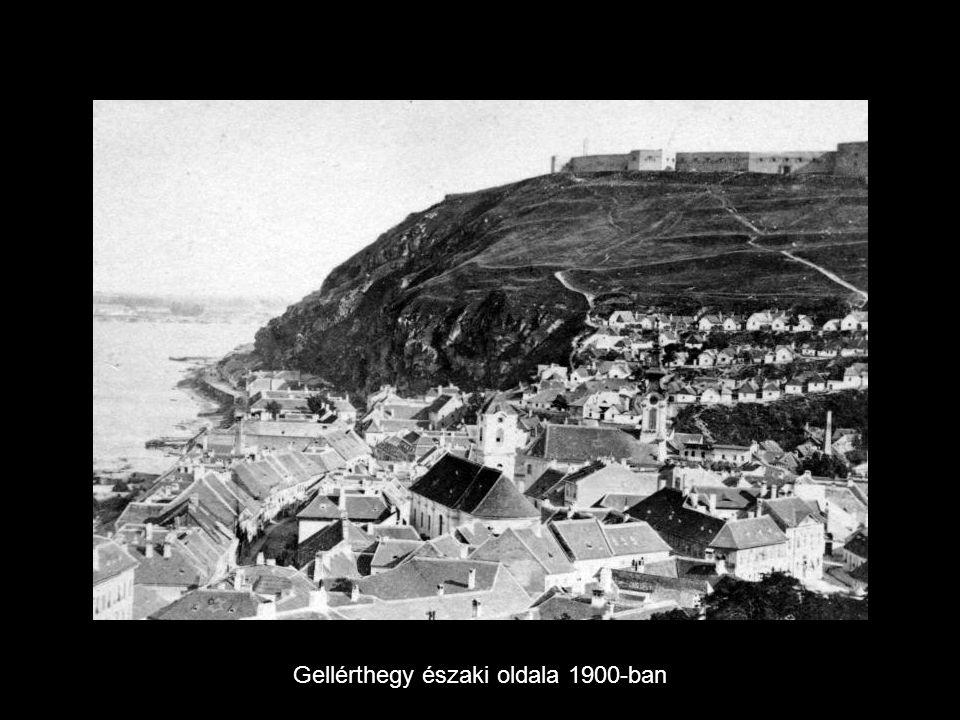 Gellérthegy északi oldala 1900-ban