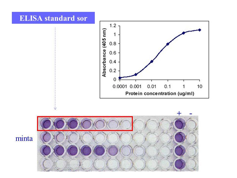 ELISA standard sor + - minta 10