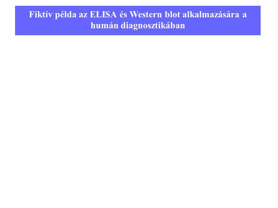 Fiktív példa az ELISA és Western blot alkalmazására a humán diagnosztikában