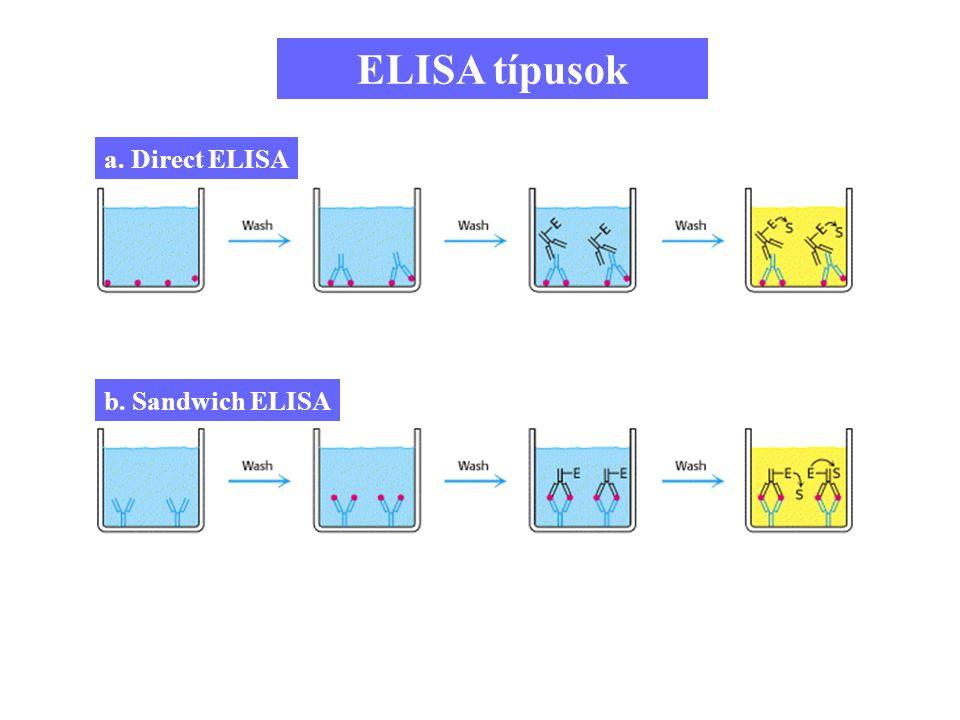 ELISA típusok a. Direct ELISA b. Sandwich ELISA 8