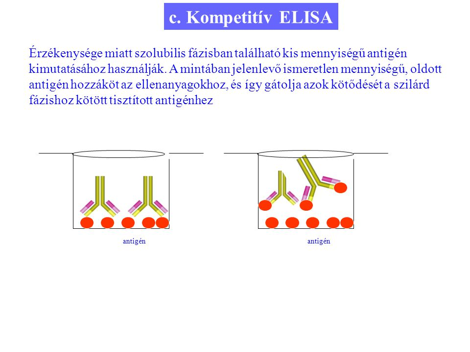 c. Kompetitív ELISA