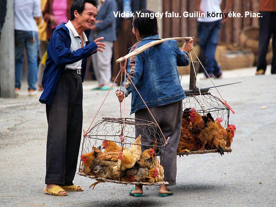 Vidék Yangdy falu. Guilin környéke. Piac.