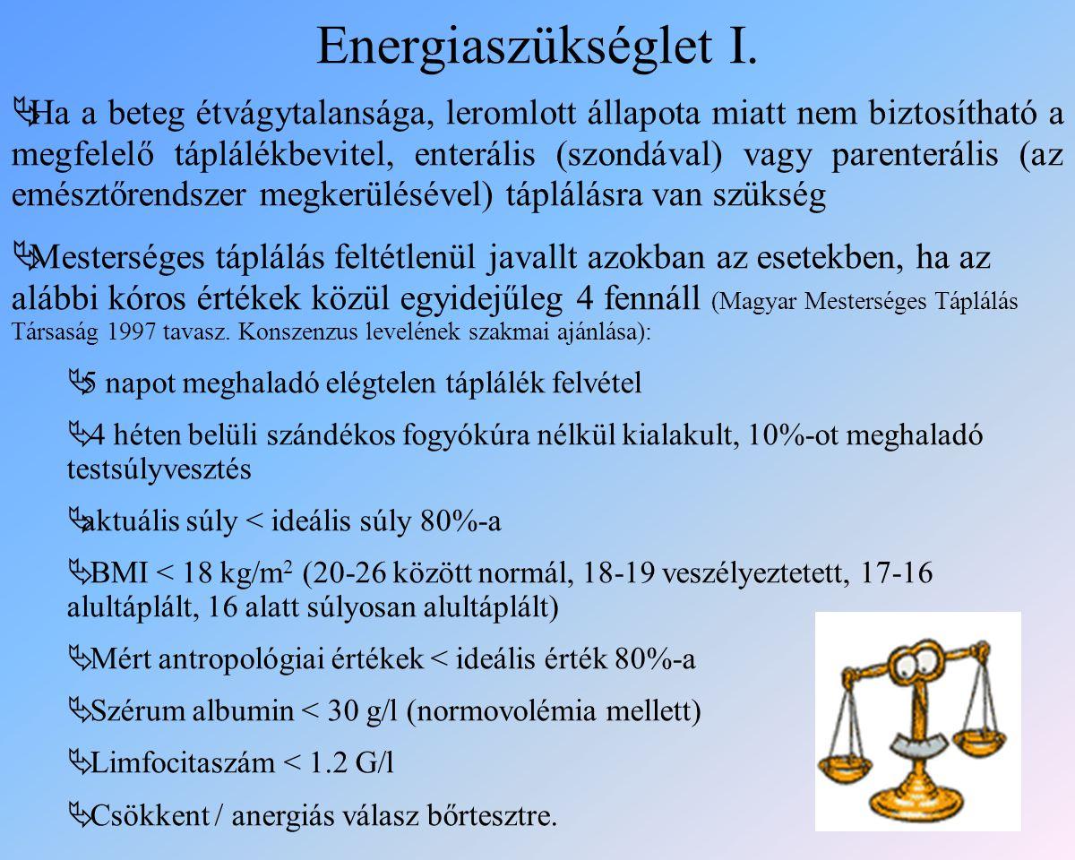 Energiaszükséglet I.