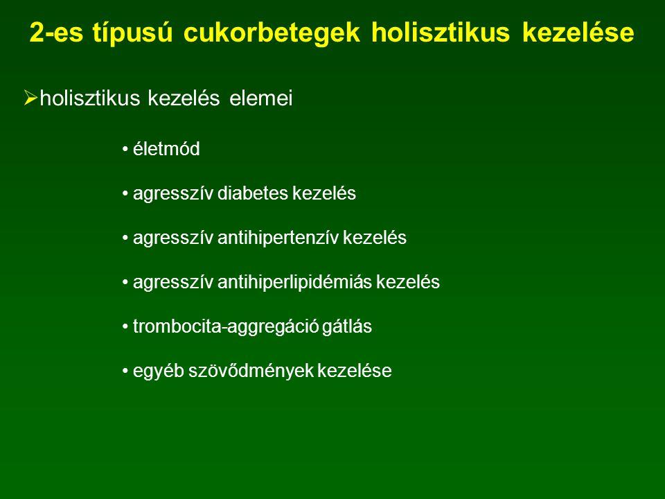 2-es típusú cukorbetegek holisztikus kezelése