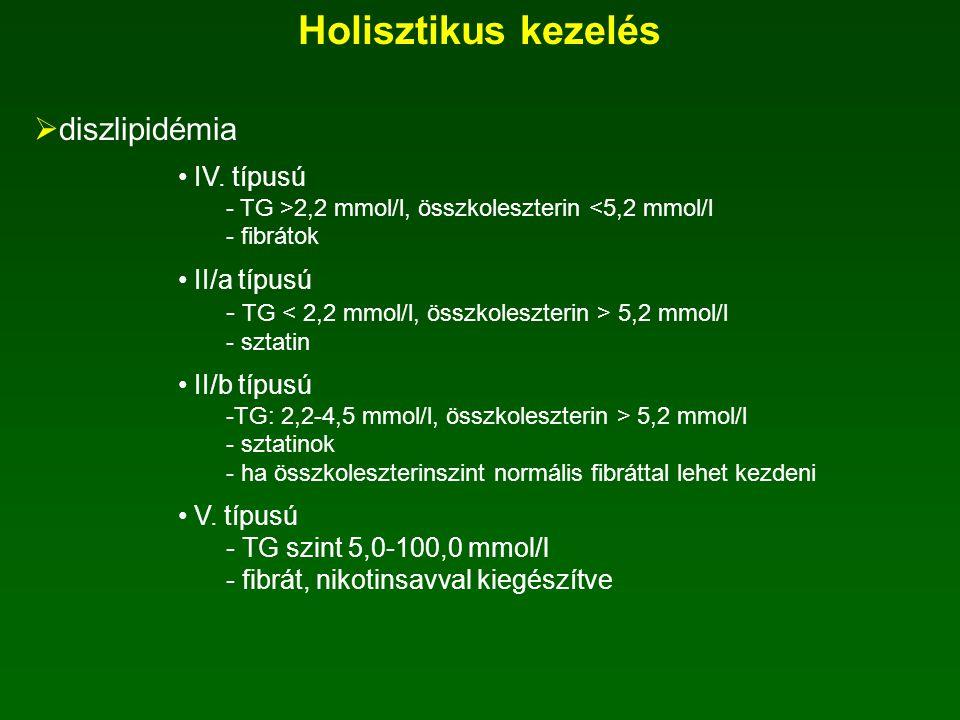 Holisztikus kezelés diszlipidémia IV. típusú II/a típusú