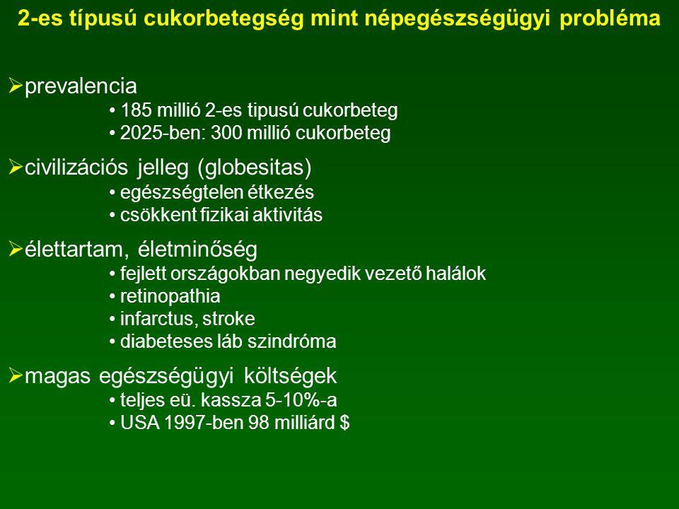 2-es típusú cukorbetegség mint népegészségügyi probléma