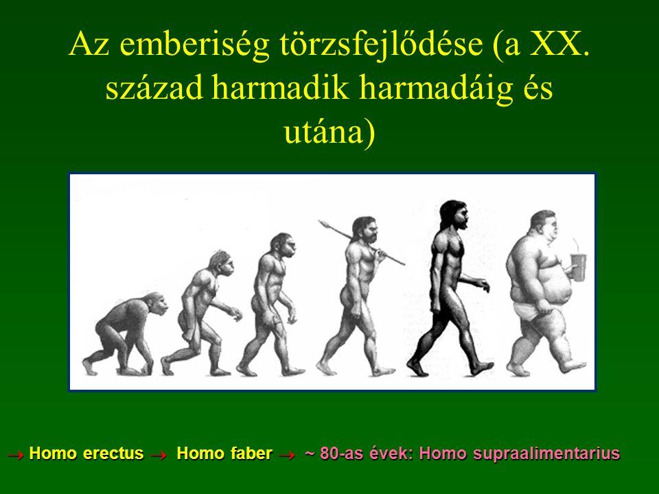 Az emberiség törzsfejlődése (a XX. század harmadik harmadáig és utána)