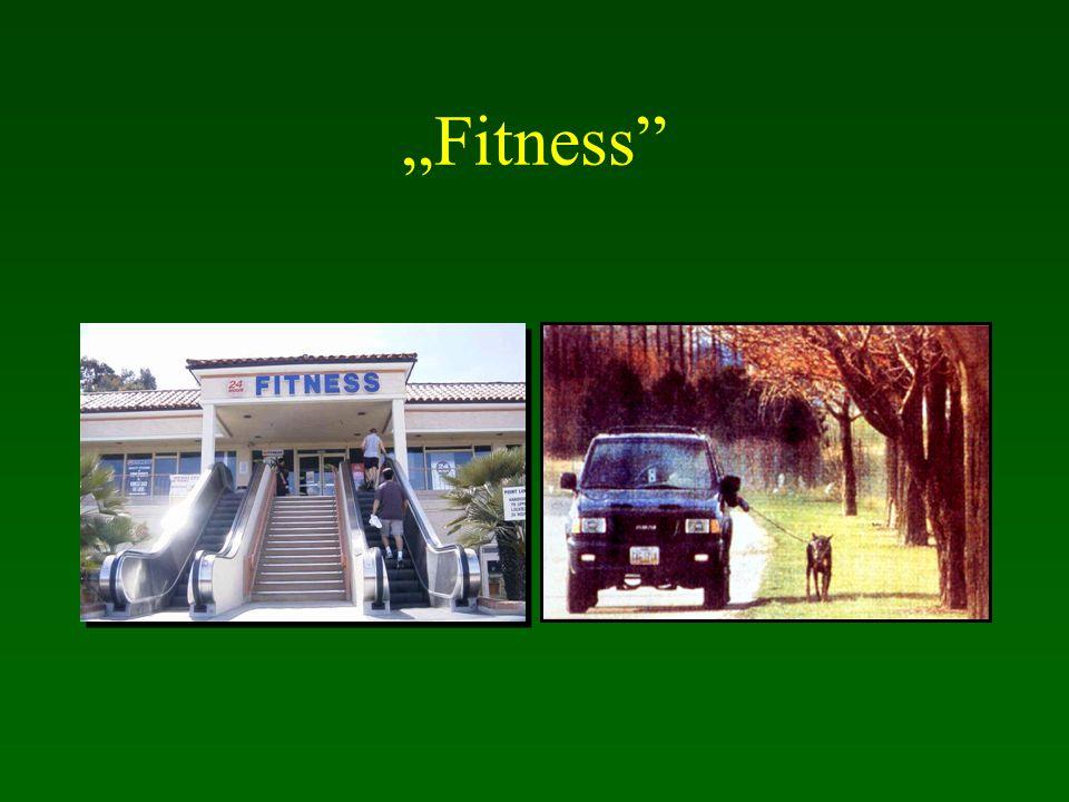 """Fitness"