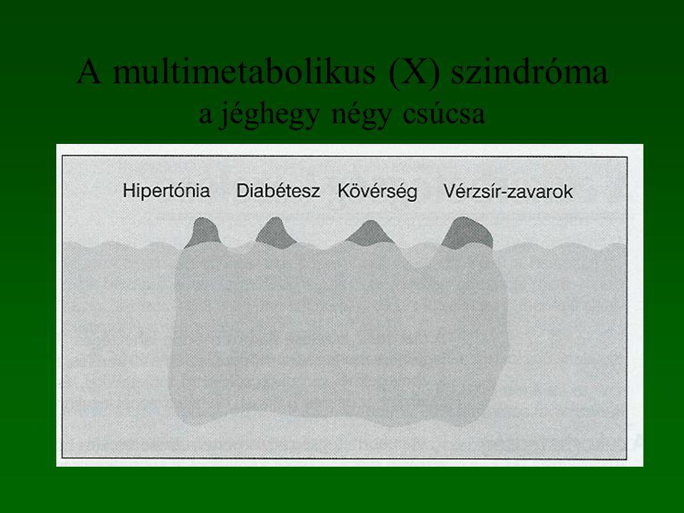 A multimetabolikus (X) szindróma a jéghegy négy csúcsa