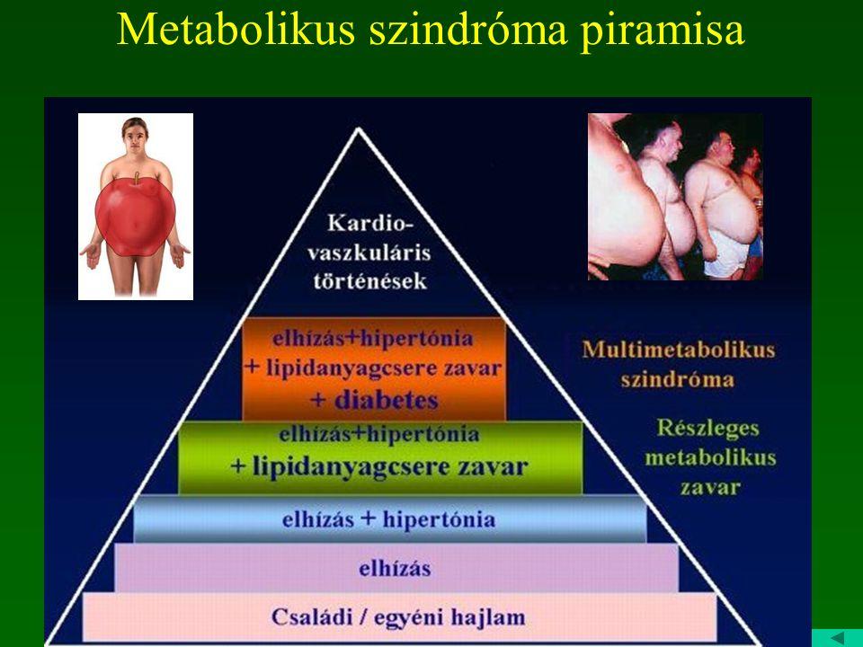 Metabolikus szindróma piramisa