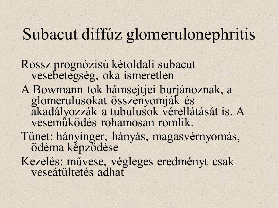 Subacut diffúz glomerulonephritis