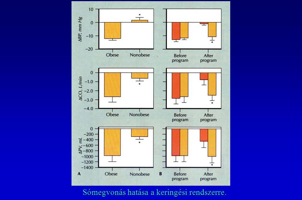 Sómegvonás hatása a keringési rendszerre.