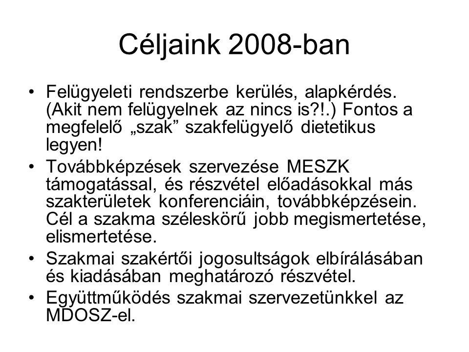 Céljaink 2008-ban