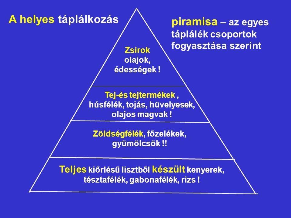 piramisa – az egyes táplálék csoportok fogyasztása szerint