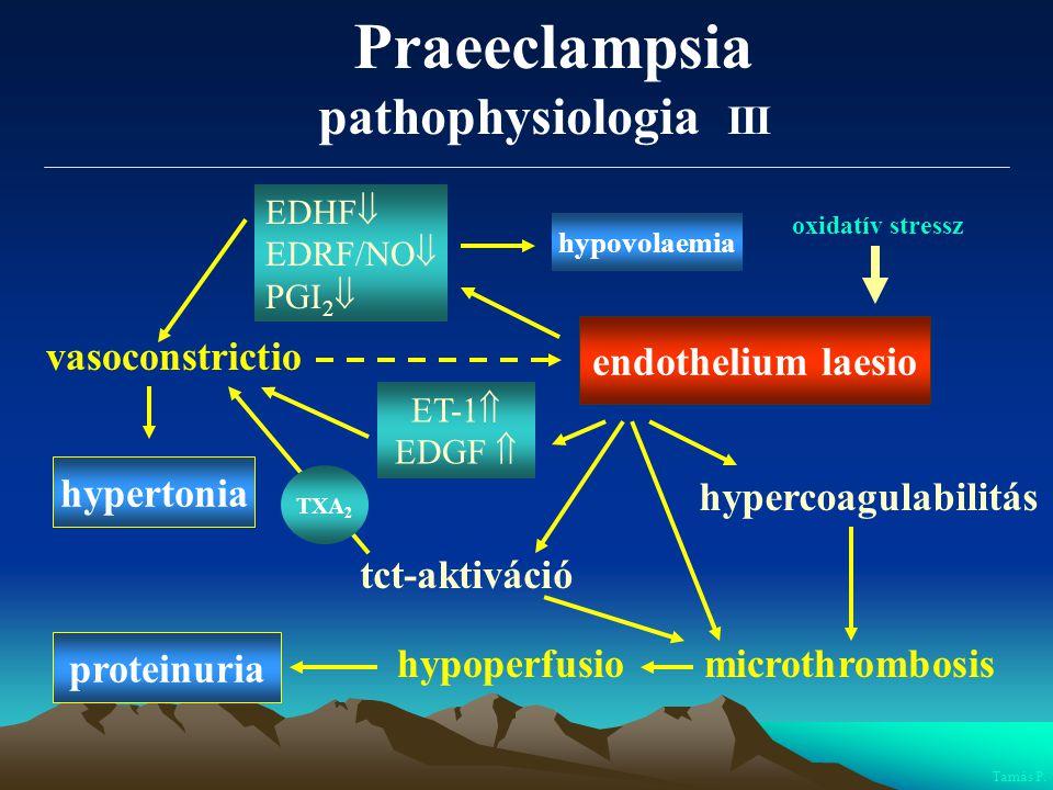Praeeclampsia pathophysiologia III endothelium laesio vasoconstrictio