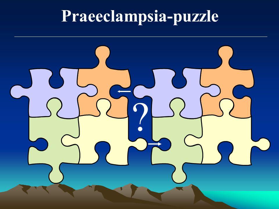 Praeeclampsia-puzzle